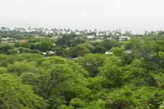 hawai0062