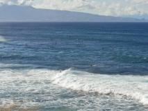hawai0284