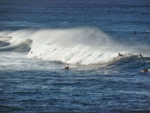 hawai0287
