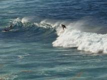 hawai0295