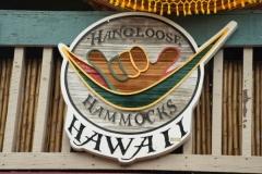 hawai0325