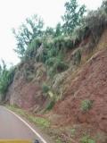 hawai0335