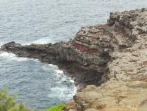 hawai0341