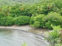 hawai0357